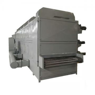 Tenebrio Molitor Continuous Microwave Belt Dryer